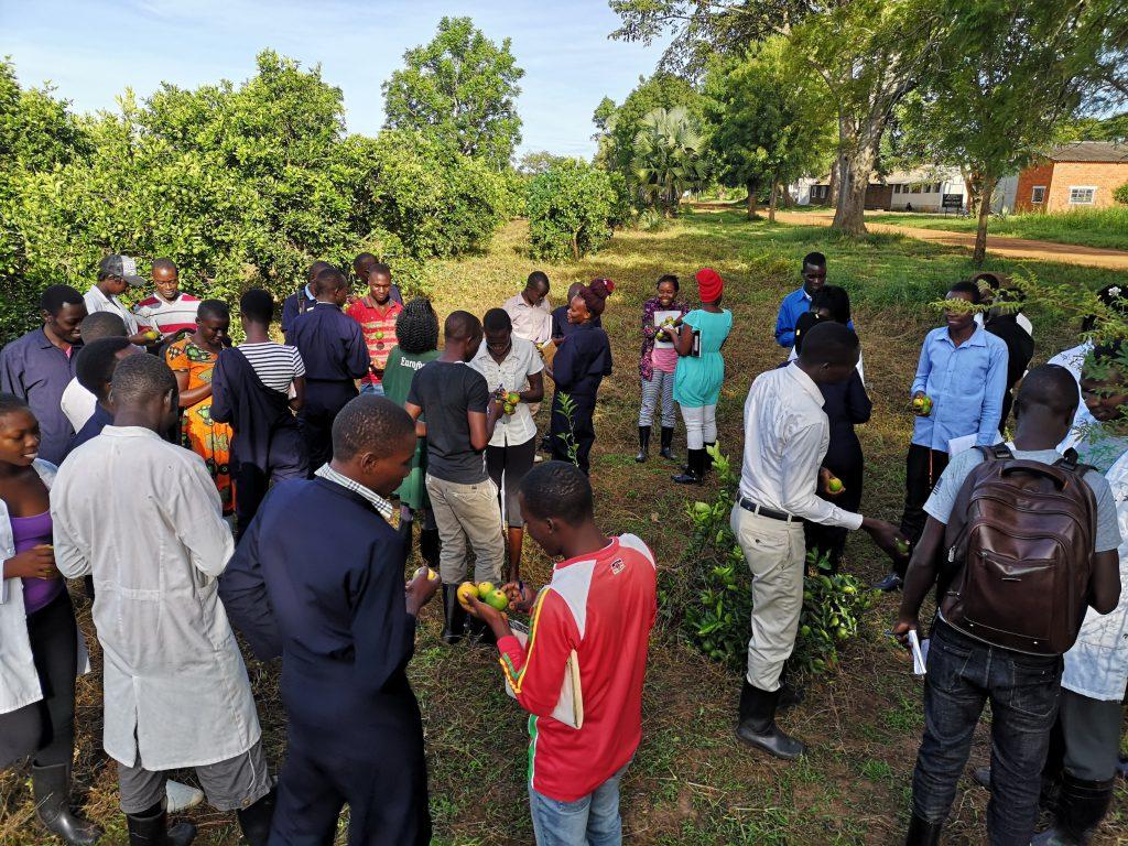 agrarisch onderwijs Oeganda